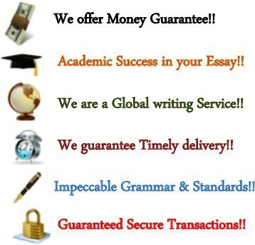 Custom Essays Term Papers