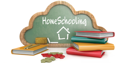 Write my Essay on Home Schooling
