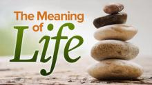 MEANING OF LIFE: ORGANIZATIONAL PATTERNS