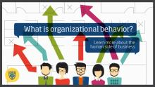 SOCIAL RESPONSIBILITY AND UNETHICAL ORGANIZATIONAL BEHAVIOR