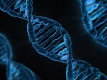 SAMPLE ESSAY ON DNA PROFILING